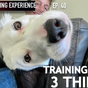 I'm Training These 3 Things Right Now!