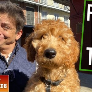 How To Train Your Dog to NOT LOSE Their MIND When You Go Anywhere! (EP: 11)