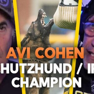 Avi Cohen Schutzhund IPO Champion - Training and Competing in IPO - EP.75