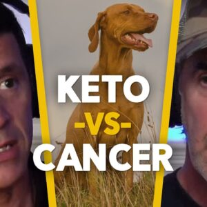Can Keto Dog Food Cure Cancer? -  EP.73