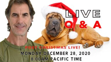 LIVE Q&A Any Dog Question with Robert Cabral