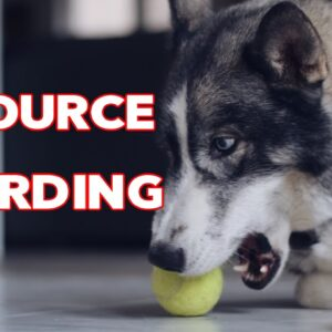 Resource Guarding - How to FIX It and PREVENT
