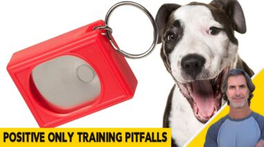 The MANY PITFALLS of POSITIVE ONLY dog training