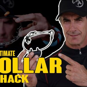 The Ultimate eCollar Hack - How I Use the E-Collar to Train MY Dogs