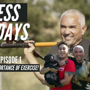 Importance of Exercise & Becoming A Better Pack Leader Of Our Lives