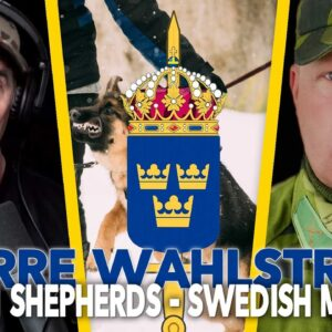 German Shepherds in Swedish Military - Pierre Wahlström Podcast EP 84
