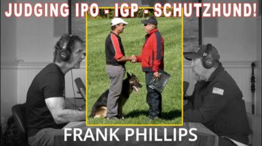 Schutzhund IPO IGP - What Does the Judge Look for in the Dog and Handler - From EP. 77