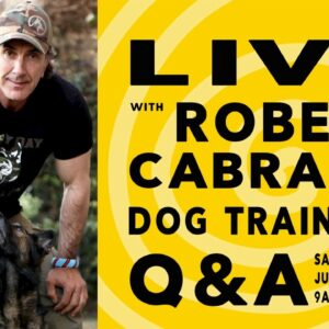 LIVE with Robert Cabral
