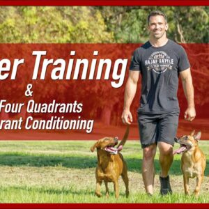 Marker Dog Training & The Four Quadrants of Operant Conditioning