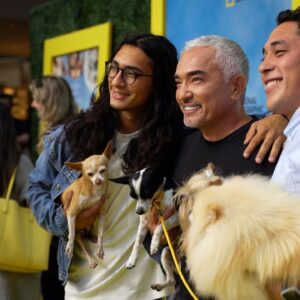 THE PREMIERE OF MY NEW SHOW, BETTER HUMAN BETTER DOG!