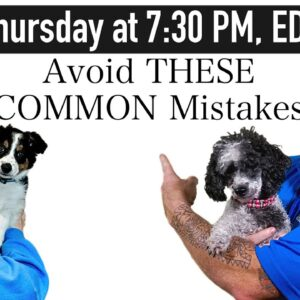 The 5 Most Common Puppy Training Mistakes New Dog Owners Make