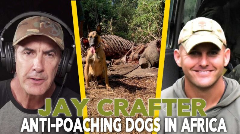 Anti Poaching Dogs in Africa - Jay Crafter EP 92
